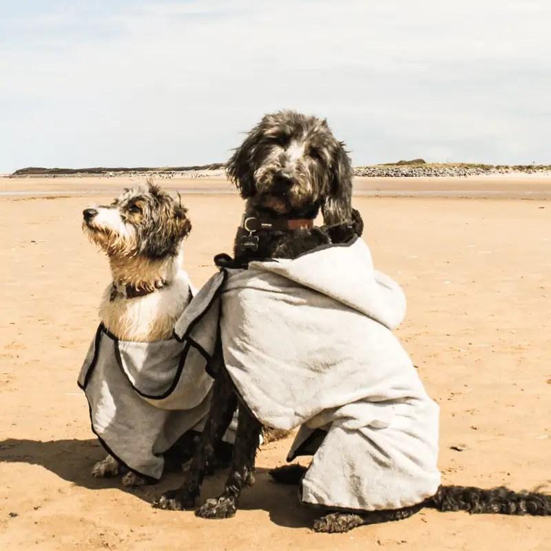 Groom Bademantel von Happy Pet mit zwei Hunden
