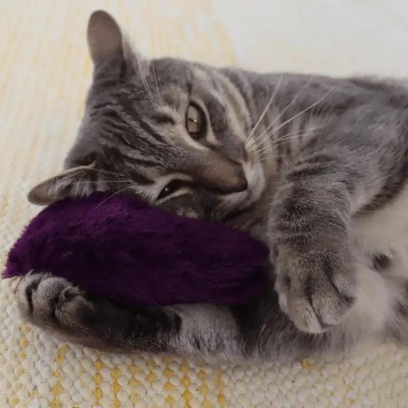 4cats Plüsch Herz mit Nikita der Katze