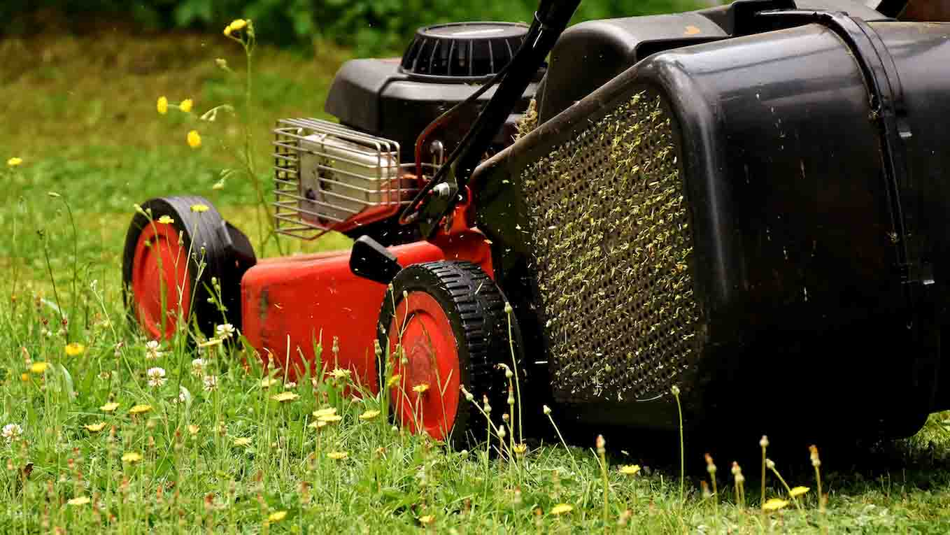 hight resolution of lawn mower