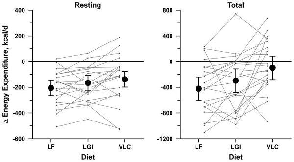 Low Carb Diäten & Cortisol: Reduktion des Metabolismus