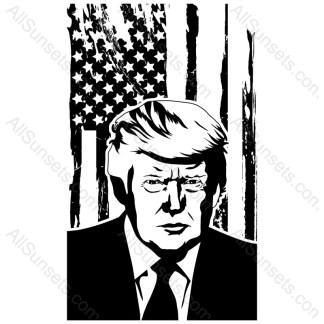Donald Trump Grunge Flag