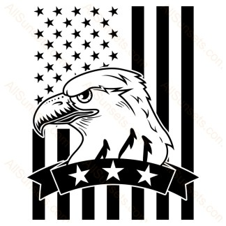 Eagle Head Banner With Stars American Flag