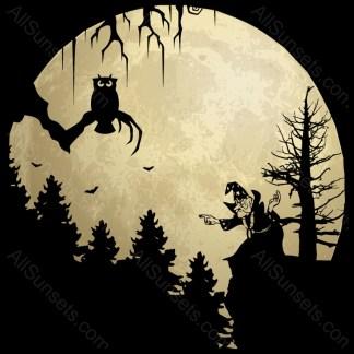 Halloween Wizard Owl Full Moon Scene