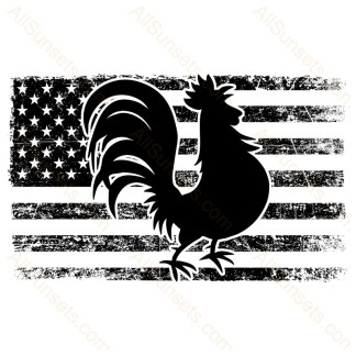 Rooster Stressed American Flag