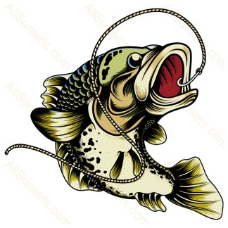 Bass Fishing Line Hook Colored PNG