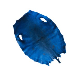 Bill Word Furs Electric Blue Dyed