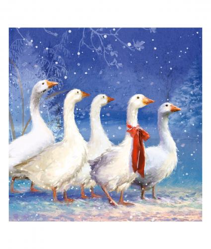 Winter Geese Christmas Card Pack Of 10 Cancer Research