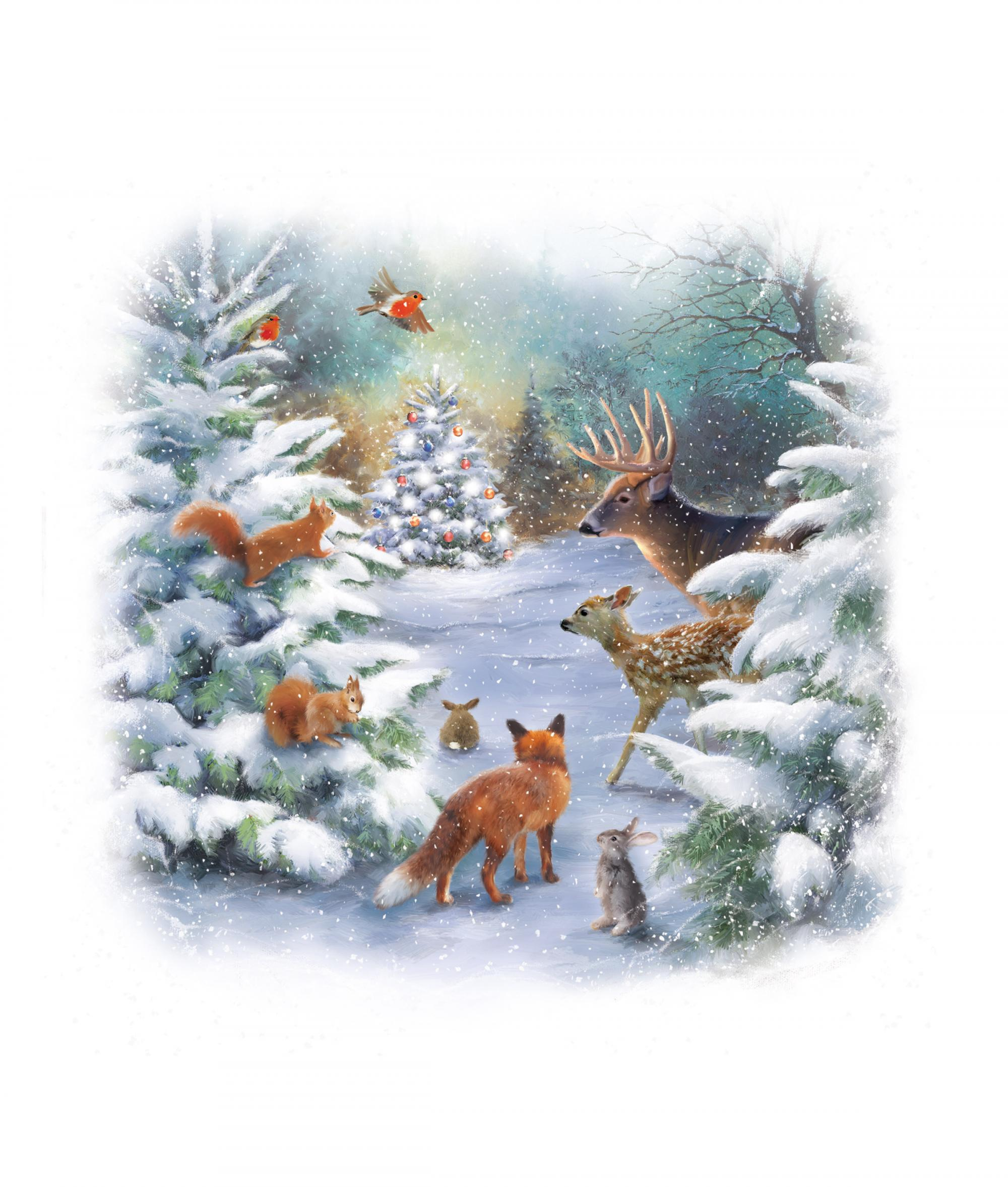 Woodland Christmas Card Pack Of 10 Cancer Research UK