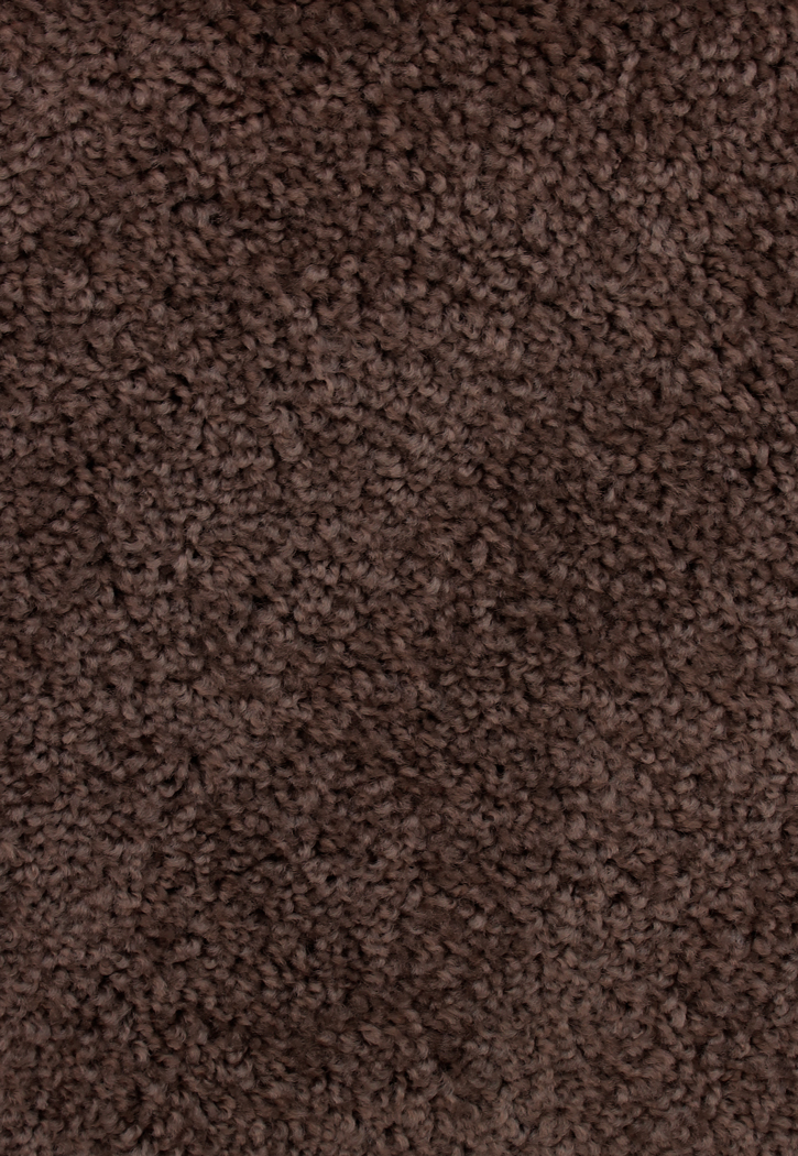 Limited Stock  Avenger Coffee Bean SaxonyTexture Carpet