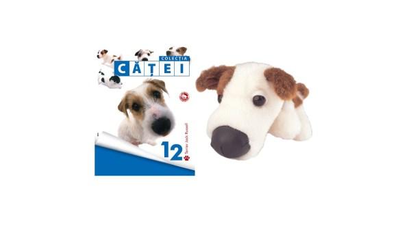 catel12