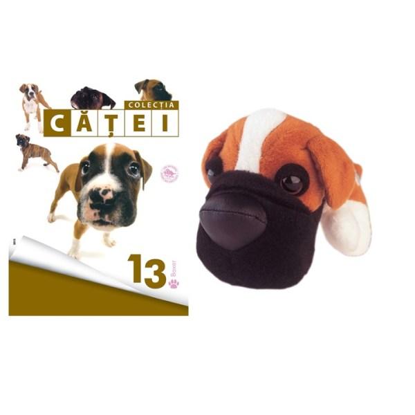 catel13