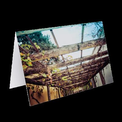 Beautiful Wood Floating Frames by Darren Bowen Photography