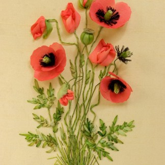 Poppies kit from little flowers book