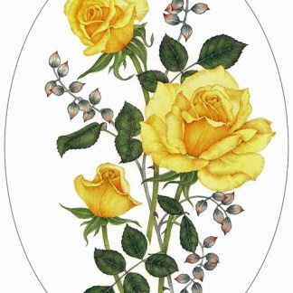Yellow Roses A4 (Medium) embroidery panel, ready to embroider