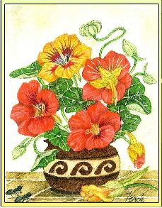 Nasturtiums embroidery panel, ready to embroider