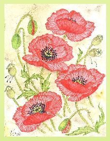 Poppies poppies everywhere embroidery panel, ready to embroider