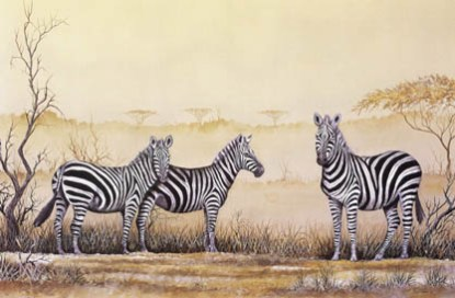 Burchell's Zebra - A4 (Medium) embroidery panel, ready to embroider