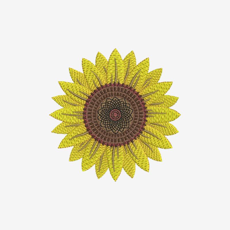 Flowers & Gardens Vector Designs