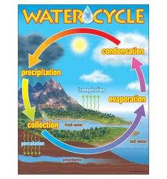 water cycle diagram percolation [ 1000 x 1000 Pixel ]