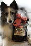 Picture of Santa Paws Christmas Cookie Mix Gift for Dogs
