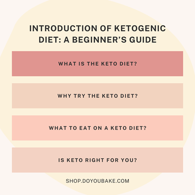 Introduction Of Ketogenic Diet: A Beginner's Guide