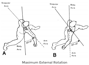 Reviewing ASMI's Biomechanical Analysis of Dr. Marshall's