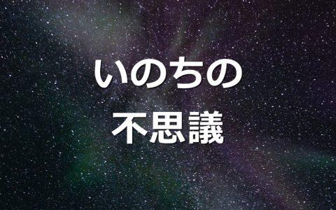 いのちの不思議★E-Conceptionのメルマガ【第502号】