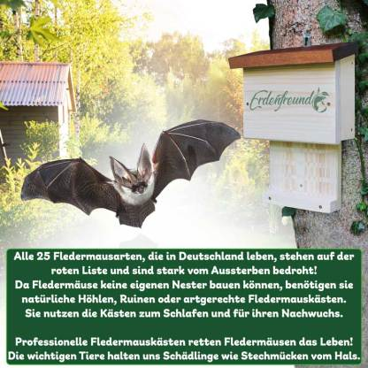 Fledermäuse aussterben