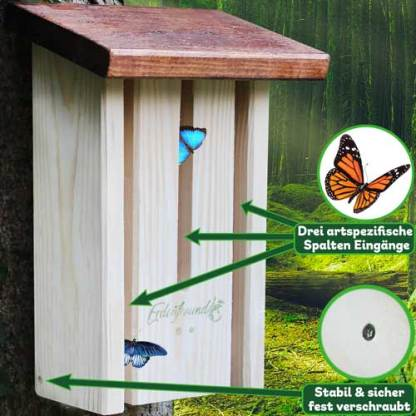 Schmetterlingshaus Vorteile 2