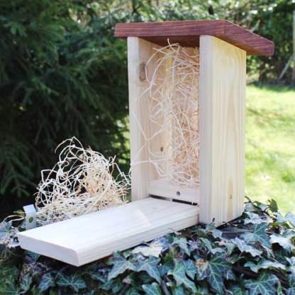 Schmetterlingshaus offen Holzwolle