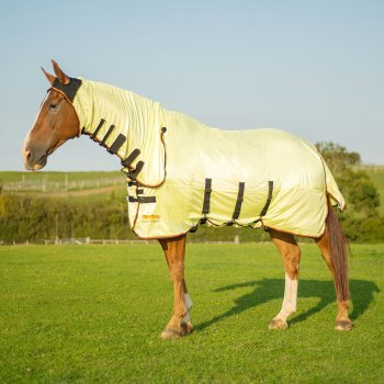 Equilibrium Field Relief Combo Fly Rug