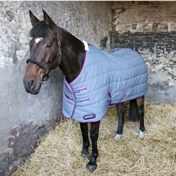 horse wearing DefenceX System 300 stable rug