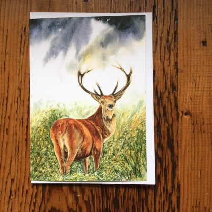 Lone Stag Card