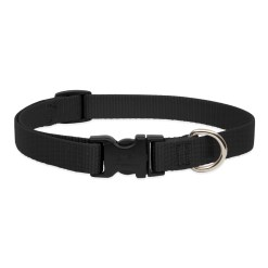 LupinePet Solid Black Dog Collar – Medium (3/4″)
