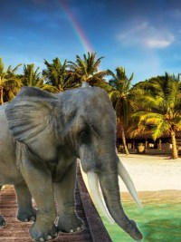 elefant lebensgross mit stosszähnenkunstharz gartenfiguren garten fantasy