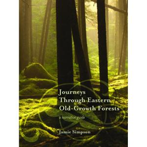 journey through eastern old growth forest