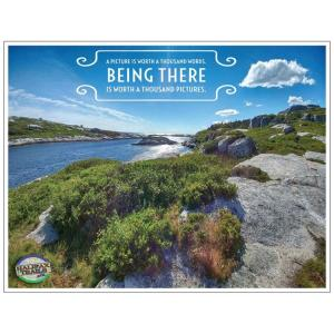 Polly's Cove Nova Scotia Postcard