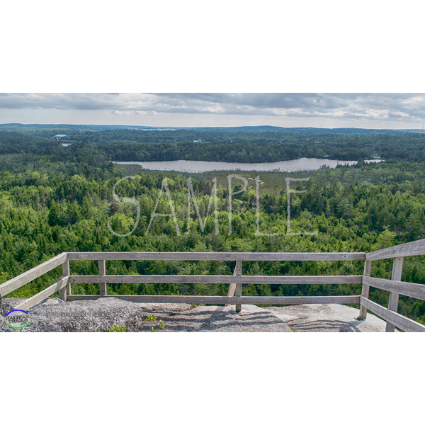 Musquodoboit Trailway Background