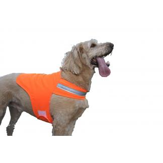 Orange Dog Safety Vest