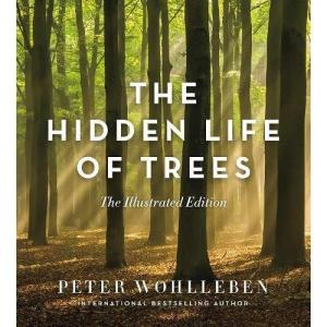 The Hidden Life Of Trees