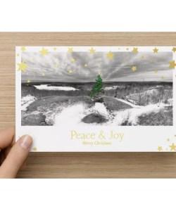 fox lake christmas cards halifax nova scotia