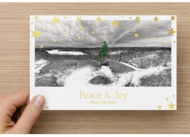 Christmas Cards – Fox Lake, W/ Embossed Foil Trim (Packs Of 10 & 20)