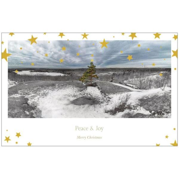 christmas card nature halifax nova scotia