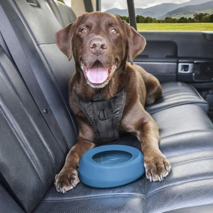 Kurgo Splash-Free Wander(TM) No-Spill Portable Water Dog Bowl and Food Pet Bowl
