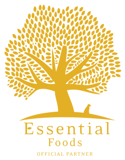 Logo Essential Partner