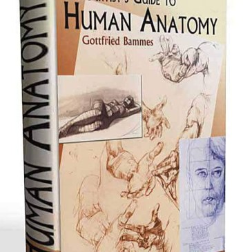 GOTTFRIED BAMES HUMAN ANATOMY