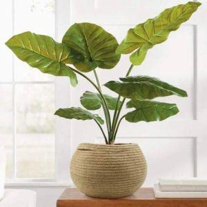 Sage Round Pot Jute Planter