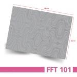 FFT101_grey