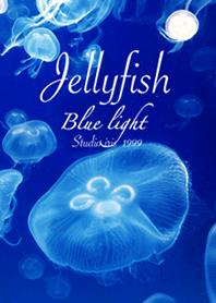 くらげ Blue Light Jellyfish