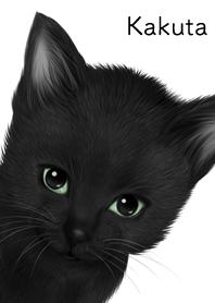かくた用可愛い黒猫子猫